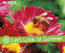 Image for Let's look at summer