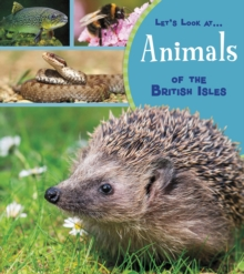 Animals of the British Isles - Beevor, Lucy