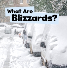 Image for What are blizzards?