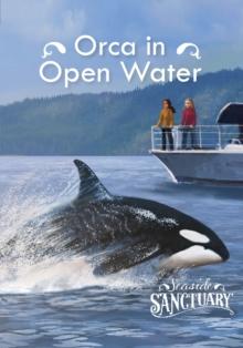 Orca in open water - Berne, Emma Carlson