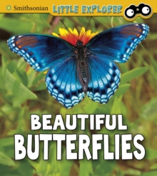 Beautiful butterflies - Higgins, Melissa