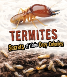 Image for Termites  : secrets of their cozy colonies