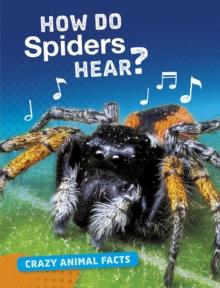 How do spiders hear? - Furstinger, Nancy