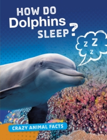 Image for How do dolphins sleep?