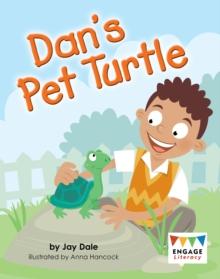 Dan's pet turtle - Dale, Jay