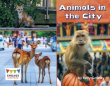 Image for ANIMALS IN THE CITY