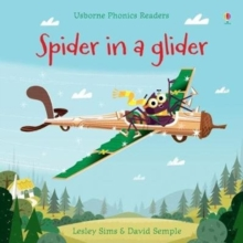 Image for Spider in a glider