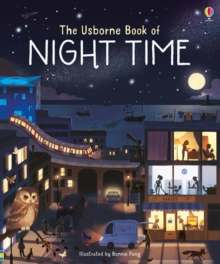 Image for The Usborne book of night time