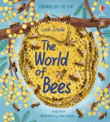 Image for Look inside the world of bees