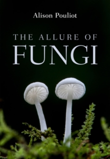 Image for The Allure of Fungi