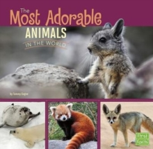 Image for All About Animals: Most Adorable Animals in the World