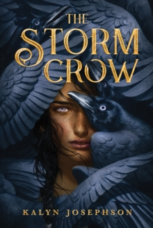 Image for The storm crow
