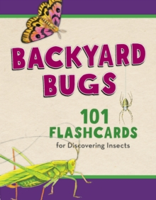 Image for Backyard Bugs : 101 Flashcards for Discovering Insects