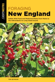 Image for Foraging New England  : edible wild food and medicinal plants from Maine to the Adirondacks to Long Island Sound