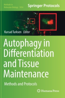 Image for Autophagy in differentiation and tissue maintenance  : methods and protocols