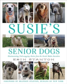 Image for Susie's senior dogs