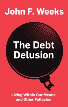 Image for The debt delusion  : living within our means and other fallacies