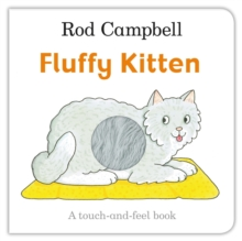 Image for Fluffy kitten