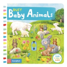 Image for Busy baby animals