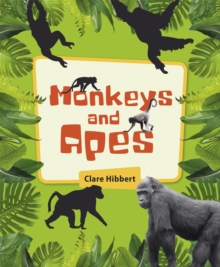 Image for Monkeys and apes