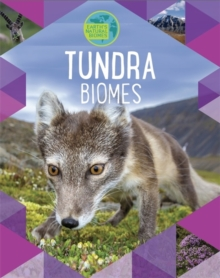 Image for Tundra
