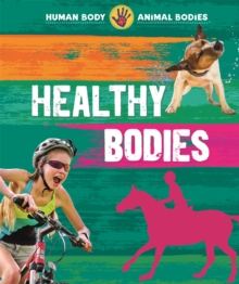 Image for Healthy bodies