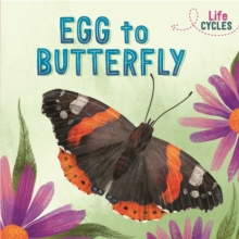 Image for Egg to butterfly