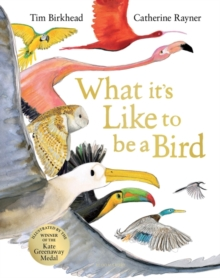 Image for What it's like to be a bird