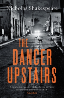 Image for The dancer upstairs