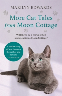 More Cat Tales From Moon Cottage