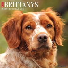 Image for Just Brittanys 2021 Wall Calendar (Dog Breed Calendar)