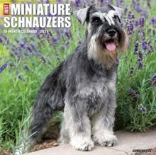Image for Just Miniature Schnauzers 2021 Wall Calendar (Dog Breed Calendar)