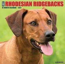 Image for Just Rhodesian Ridgebacks 2021 Wall Calendar