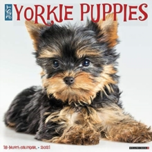 Image for Just Yorkie Puppies 2021 Wall Calendar (Dog Breed Calendar)