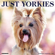 Image for Just Yorkies 2021 Wall Calendar (Dog Breed Calendar)