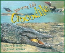 Image for Starting Life: Crocodile