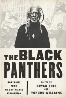 Image for The Black Panthers : Portraits from an Unfinished Revolution