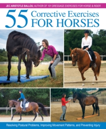 Image for 55 corrective exercises for horses  : resolving postural problems, improving movement patterns, and preventing injury