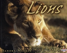 Image for Lions