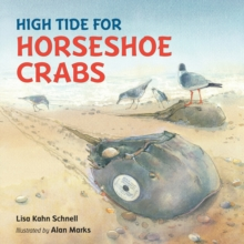 Image for High tide for horseshoe crabs