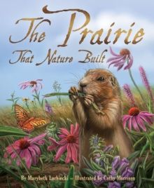 Image for The prairie that nature built