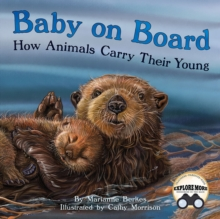 Image for Baby on Board : How Animals Carry Their Young