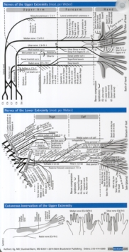 Image for Neurology Pocketcard Set