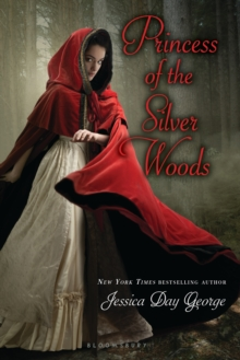 Image for Princess of the silver woods