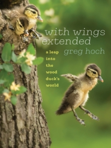 Image for With Wings Extended : A Leap into the Wood Duck's World