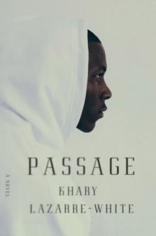 Image for Passage  : a novel