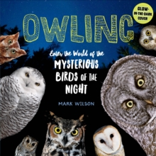 Image for Owling  : enter the world of the mysterious birds of the night