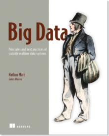 Image for Big data  : principles and best practices of scalable realtime data systems