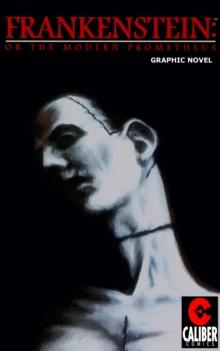 Image for Frankenstein: Or the Modern Prometheus
