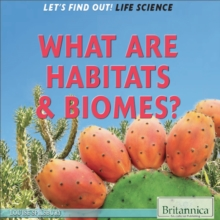 Image for What are habitats & biomes?